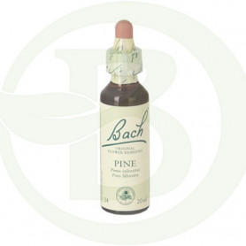 Flor de Bach Pine (Pino Silvestre) 20Ml. Bach